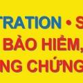 DỊCH VỤ DMV SANG TÊN XE-BAO HIEM Image 2