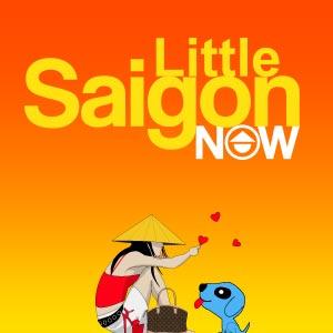 www.littlesaigonnow.com